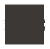 logo: whizdom_delhi